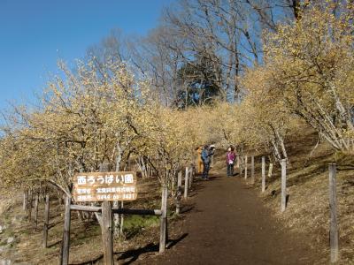 山頂の遊歩道