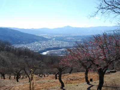 山と秩父の市街地