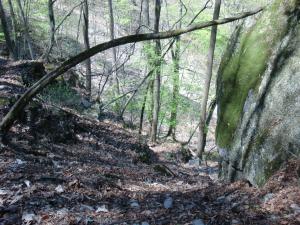 巨岩を通過