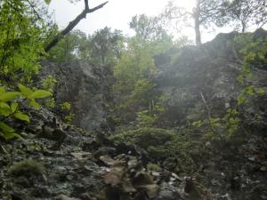 濡れている岩場