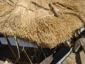 茅葺き屋根の端の部分