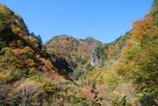 ニッチツ鉱山方面の紅葉