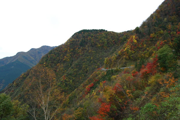 大血川渓谷