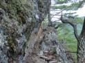岩の亀裂の道