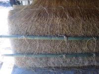 茅葺き屋根の練習台