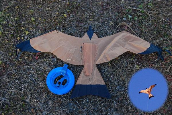鳥の形の凧