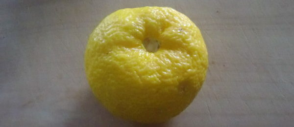 柚の砂糖漬け