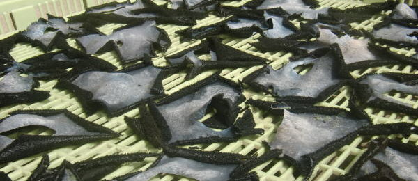 岩茸の下処理